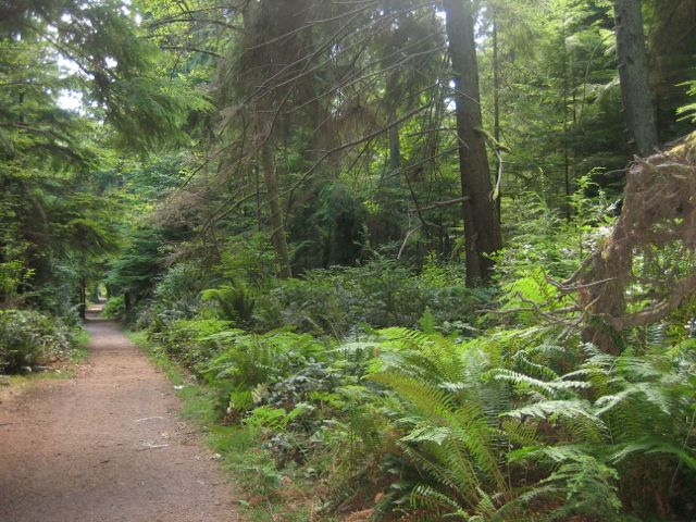 point-defiance